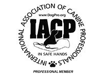 IACP Logo Professional