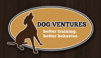 Focus Factor, logo-dog-ventures